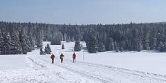 Zlatá Studna - lyžařské trasy - Virtual Tour/Panorama